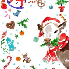 newzealand_new_year_cow