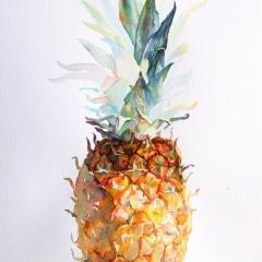 newzealand_ananas